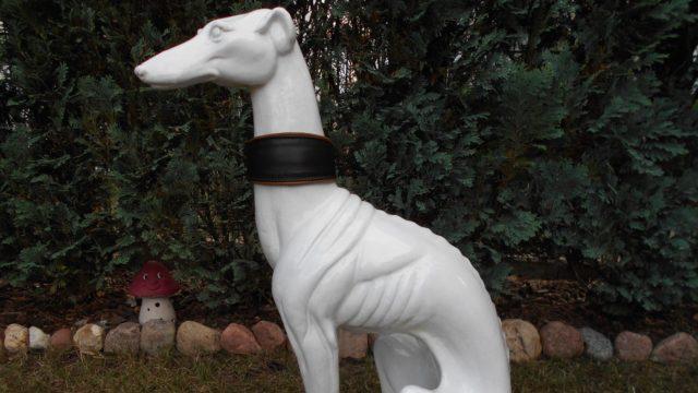 Halsbänder für Windhunde
